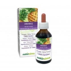 Ananas Tintura madre 100 ml liquido analcoolico - Naturalma