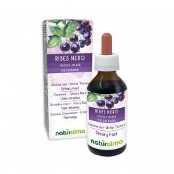 Ribes nero Tintura madre 100 ml liquido analcoolico - Naturalma