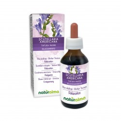 Scutellaria Americana Tintura madre 100 ml liquido analcoolico - Naturalma