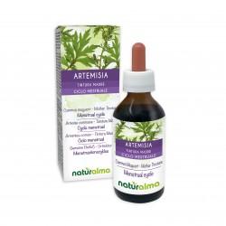 Artemisia Tintura madre 100 ml liquido analcoolico - Naturalma