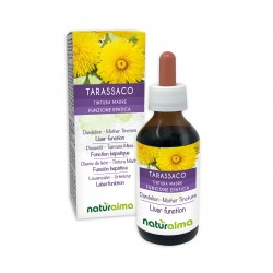 Tarassaco Tintura madre 100 ml liquido analcoolico - Naturalma