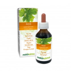 Fico Gemmoderivato 100 ml liquido analcoolico - Naturalma