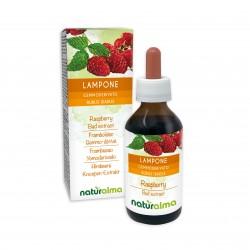 Lampone Gemmoderivato 100 ml liquido analcoolico - Naturalma