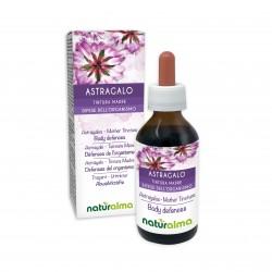 Astragalo Tintura madre 100 ml liquido analcoolico - Naturalma