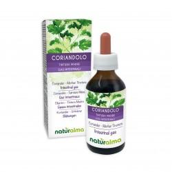 Coriandolo Tintura madre 100 ml liquido analcoolico - Naturalma