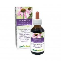 Echinacea Tintura madre 100 ml liquido analcoolico - Naturalma