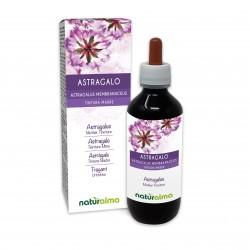 Astragalo Tintura madre 200 ml liquido analcoolico -...